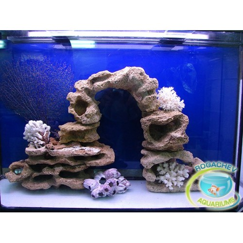 Как сделать своими руками кораллы в аквариум